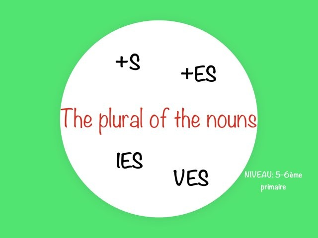 The Plural Of The Nouns by Laurence Micheletti
