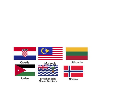 FLAGS by Joy Diaz