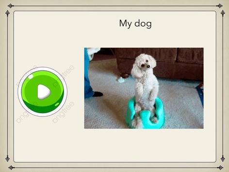 My Dog by Tristan Lim