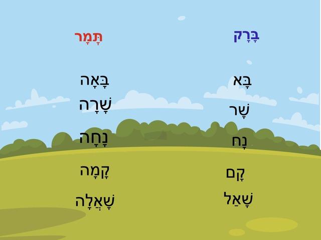 השלמת נקבה/זכר by מירב בן חמו