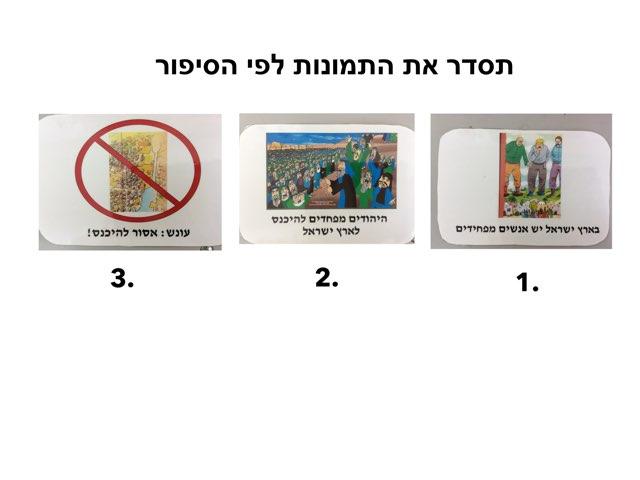 רצף פרשיות  פרשת השבוע בית מצודות by Eliezer Adler