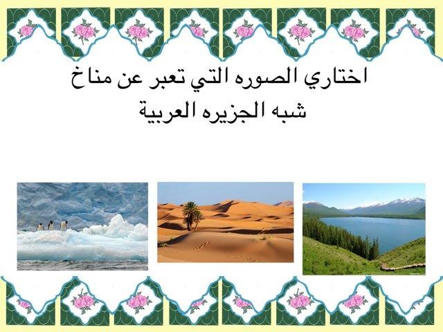 مناخ شبه الجزيره العربية  by Nora Alhajri