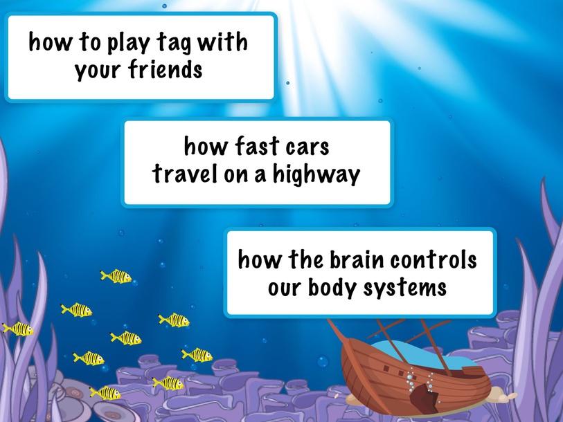 Test for My Brain RAZ level I by Cindy Derienzo
