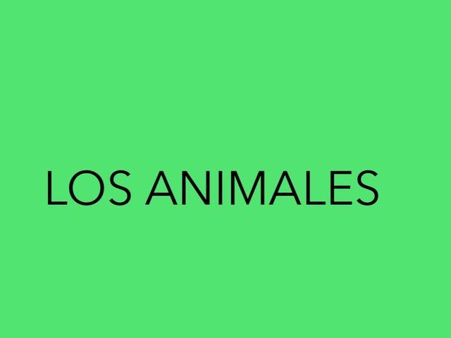 Los Animales by Mireia chandre freixas