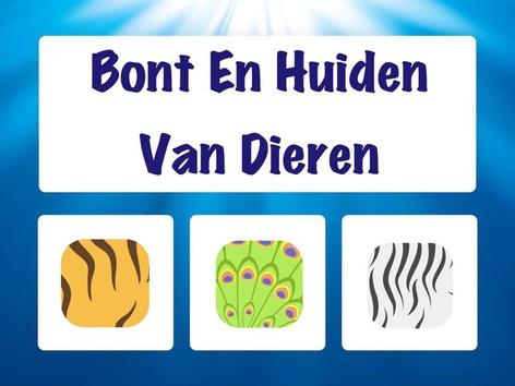 Bont En Huiden Van Dieren by Hadi  Oyna