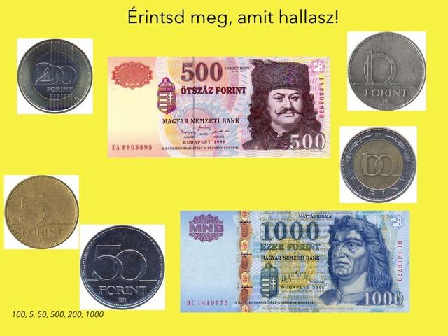 Pénz  by Evelin Pölös