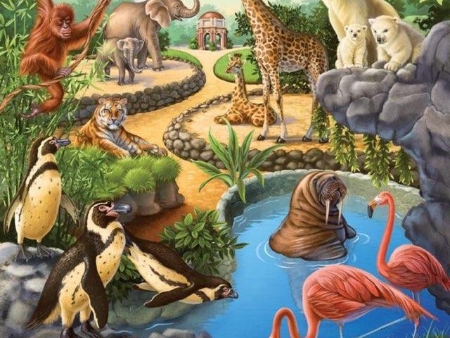 Waar zitten de dieren? by Dagmar Depuydt