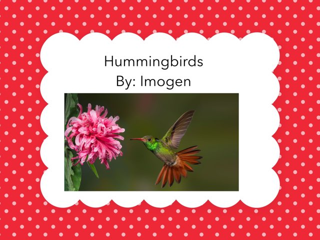 All About Hummingbirds by Diana Coyne