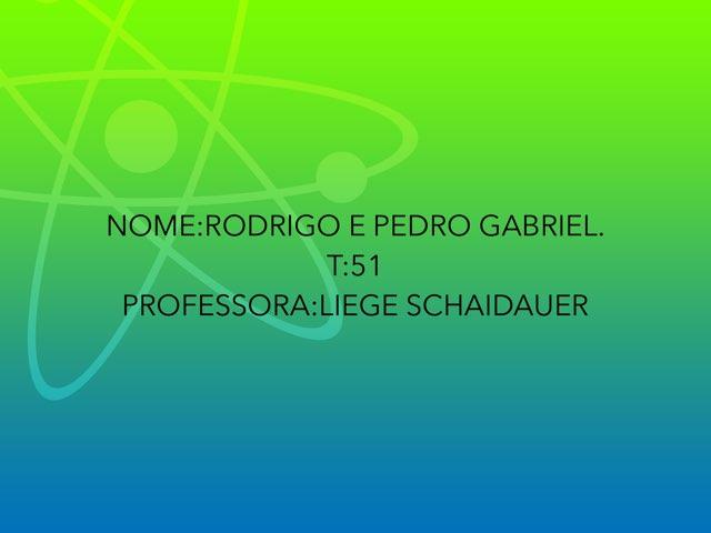 Rodrigo E Pedro by Rede Caminho do Saber