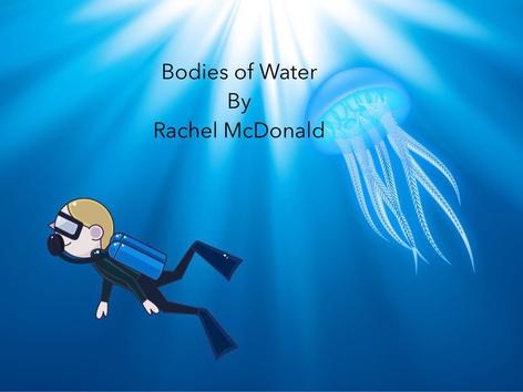 Bodies Of Water by Rachel McDonald