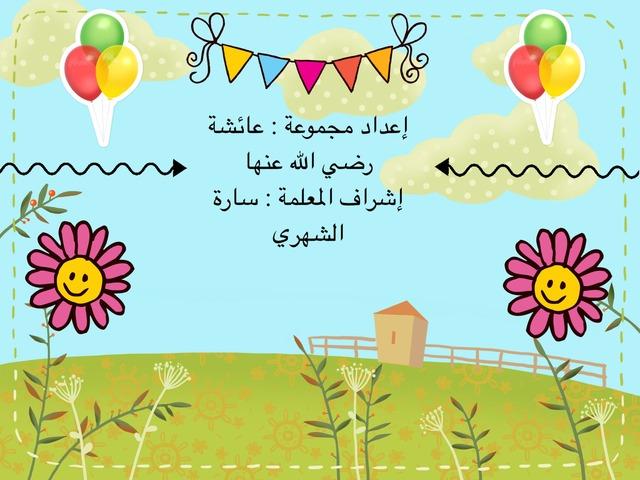 مجموعة عائشة رضي الله عنها by سارة الشهري