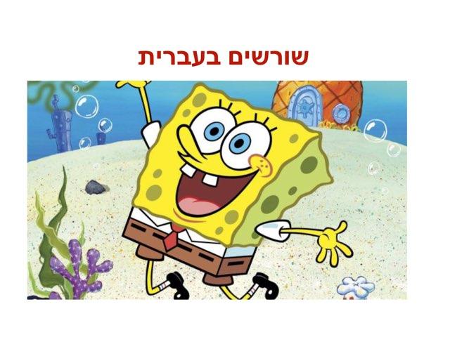 שורשים בעברית  by coral naaman