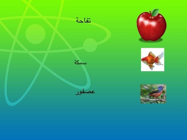 Shuaa by Shuaa Alfaraj