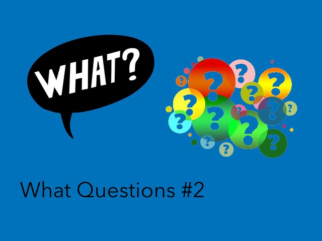 Wh Questions : What #2 by Carol Smith