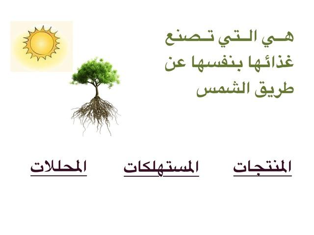الصف الرابع الوحدة الرابعة  by علي الزهراني