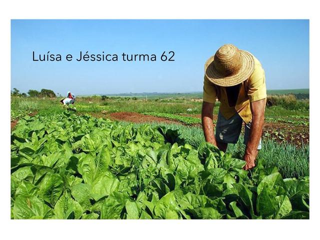 Luísa E Jéssica T62 by Rede Caminho do Saber