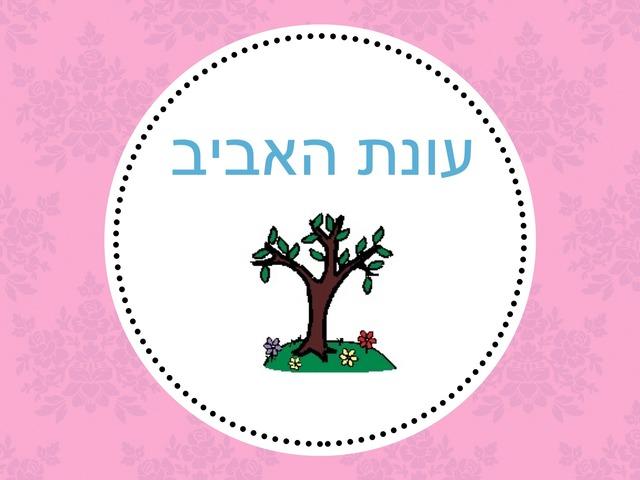 עונת האביב by חגית אברהם