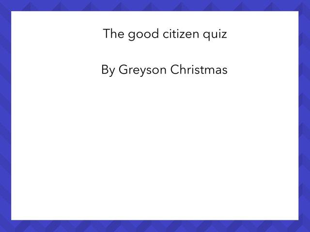 The Good Citizen Quiz by Cristina Chesser
