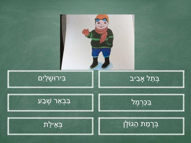 בארץ ישראל by Anat Goodman