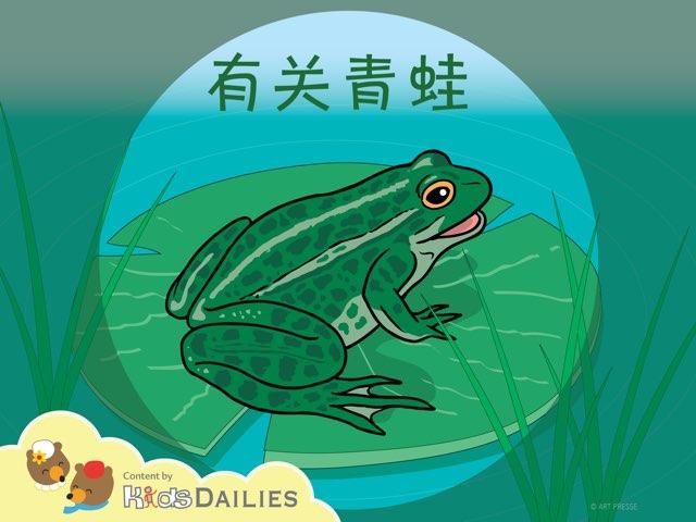 关于青蛙的小知识 by Kids Dailies