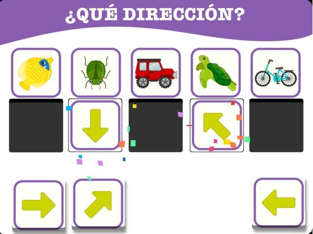 ¿Qué Dirección? by Hadi  Oyna