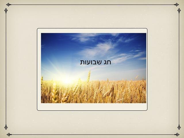 טריוויה שבועות by הלה זכות
