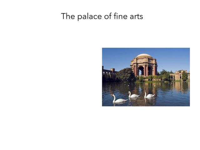 Palace of Fine Arts  by Lia Shusterman