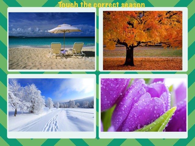 Seasons Of The Year by America Hernandez