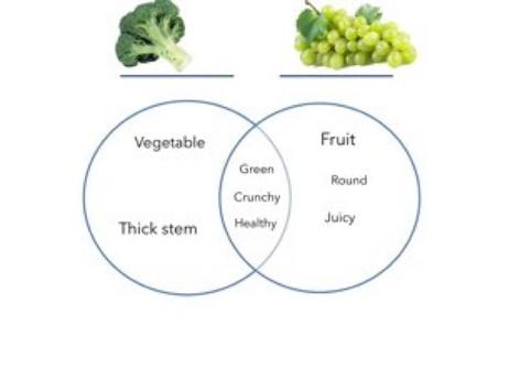 Venn Diagram by Madonna Nilsen