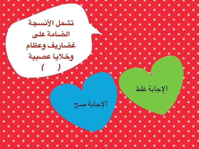 مراجعه اجهزه الجسم  by Ghadeer Dashti