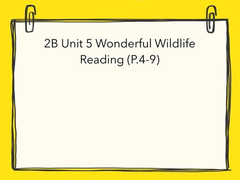 Wonderful Wildlife (Test) by Wai Lun William (TS)Wang