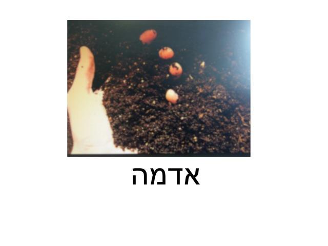 שיעור גינון שיום -  ״מה זה?״ by אלוט חיפה