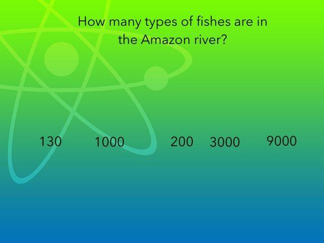 The Random Quiz by Lucas Collins