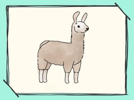 Llama Puzzles  by Mayra Vega