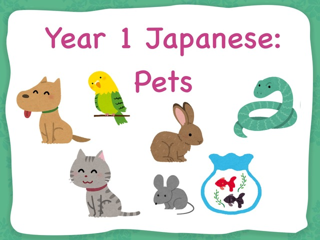 Year 1 Pets by Katie English