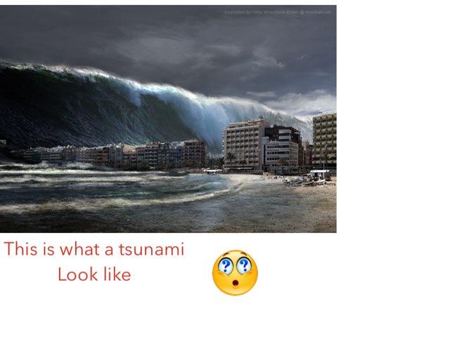The Tsunami Game by Jane Miller _ Staff - FuquayVarinaE