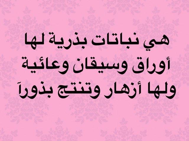 لعبة 35 by Reem Alsulaiti