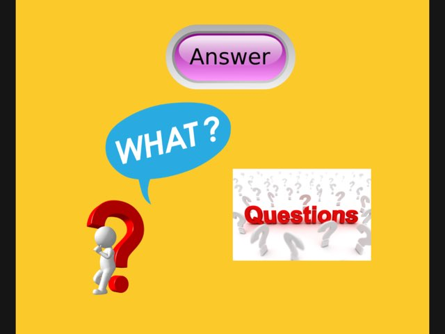Questions: What? by Carol Smith
