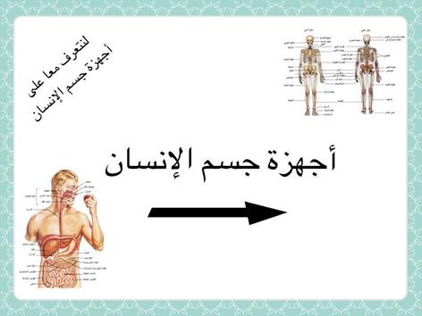 أجهزة جسم الإنسان by ريناد الجهني