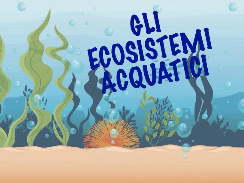 Ecosistemi Marini by Primaria Interattiva