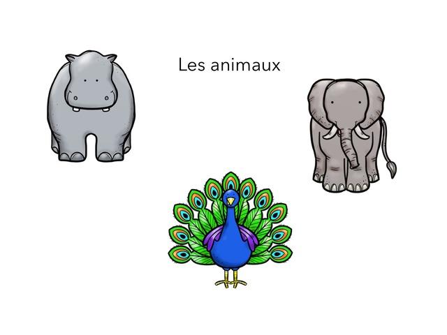 Les Animaux  by Bonneau Stéphanie