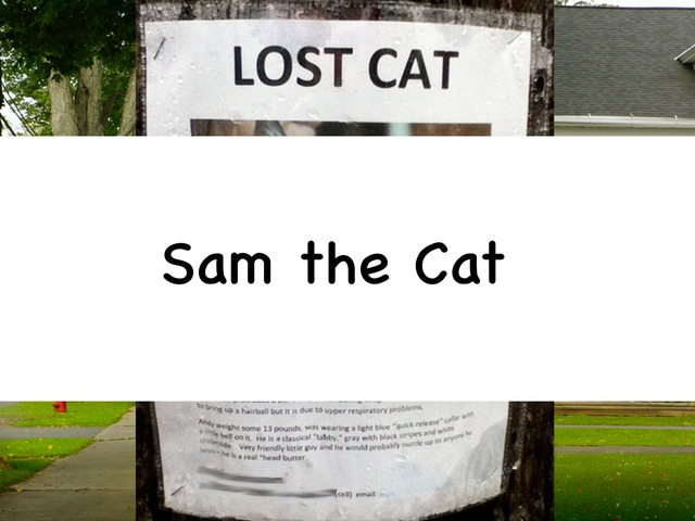 Sam The Cat by Rebecca Jarvis