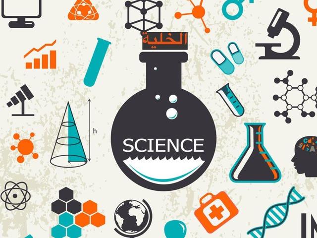 مشروع التميز علوم by Wareef Gh