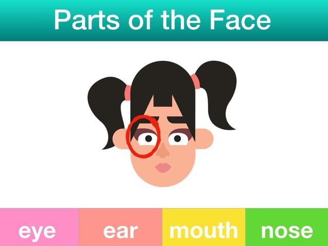 Parts of the Face by Teeny Tiny TEFL