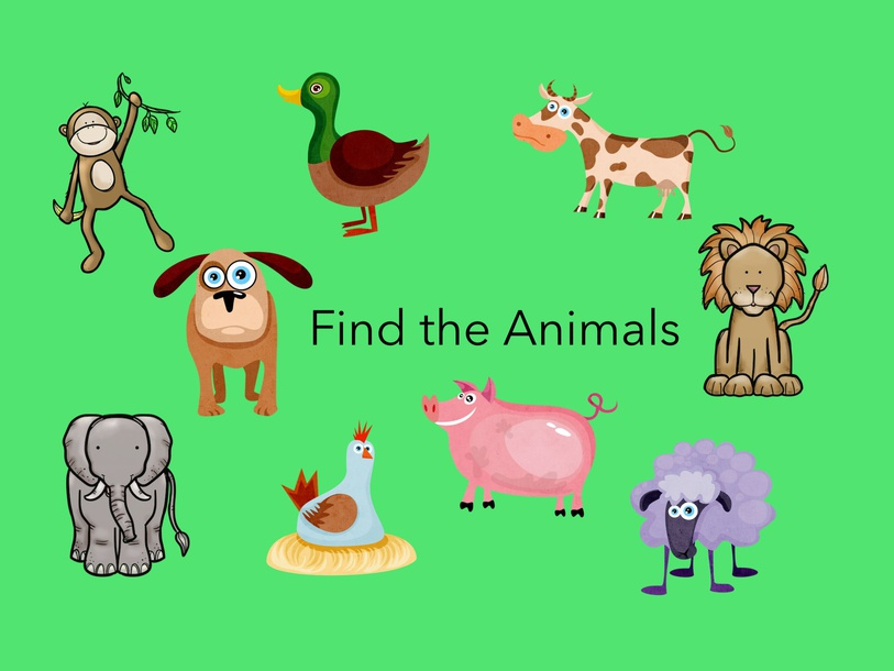 Find The Animals by Gigi Lough