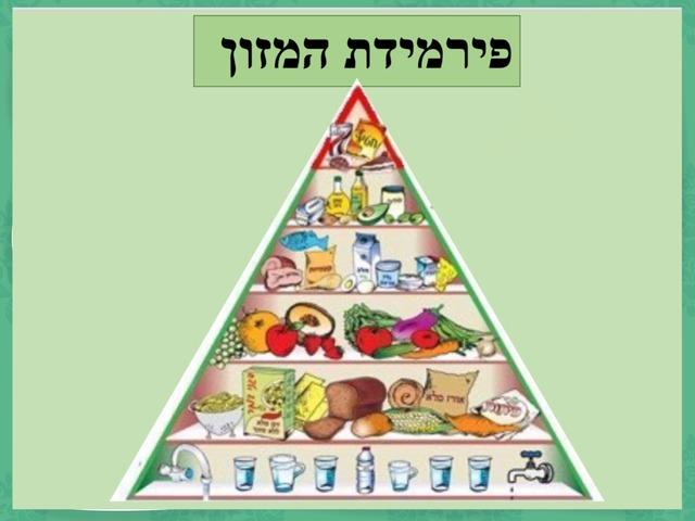 פירמידת המזון - שלב המים by לירוז קוסקס