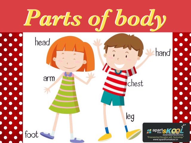Body Parts For Kids by TinyTap creator