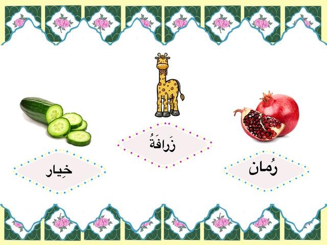 حرف الراء by Manar Mohammad