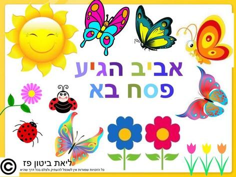 פסח#אביב הגיע פסח בא ליאת by Liat Bitton-Paz