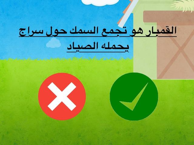 النشاط البحري by Fatma Alshameri